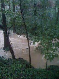 My backyard of Peachtree Creek in DeKalb County, Georgia in 2007.
